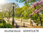 Bow Bridge In Central Park At...
