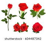 Stock photo set of beautiful red roses for design isolated on white background 604487342