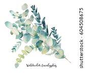 watercolor eucalyptus bouquet.... | Shutterstock . vector #604508675