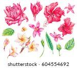 watercolor set of vintage... | Shutterstock . vector #604554692