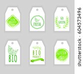set of eco friendly labels.... | Shutterstock .eps vector #604573496