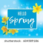 square banner with daffodils on ... | Shutterstock .eps vector #604589186