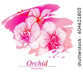 floral design with orchid... | Shutterstock .eps vector #604621805