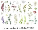 big set watercolor elements  ... | Shutterstock . vector #604667735