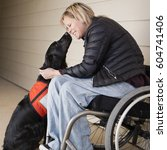 Stock photo a mature woman wheelchair user with her service dog a black labrador leaning in towards each other 604741406