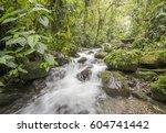 a swift flowing stream running...   Shutterstock . vector #604741442