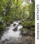 a swift flowing stream running...   Shutterstock . vector #604741472