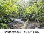 a swift flowing stream running...   Shutterstock . vector #604741502