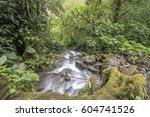 a swift flowing stream running...   Shutterstock . vector #604741526