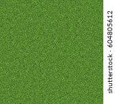 texture green lawn | Shutterstock . vector #604805612