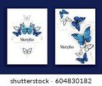Design Broschury With Blue...
