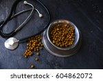 veterinary theme | Shutterstock . vector #604862072