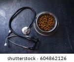 veterinary theme   Shutterstock . vector #604862126