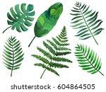 watercolor green tropical... | Shutterstock . vector #604864505