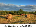 Forgotten hay bales in autumn. - stock photo