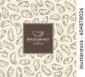 background with brazilian nut.... | Shutterstock .eps vector #604878026