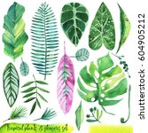 summer hand drawn watercolor... | Shutterstock . vector #604905212