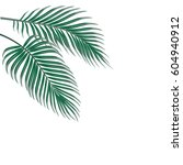 two tropical palm leaves....   Shutterstock .eps vector #604940912