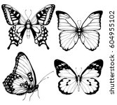 Stock vector vector butterfly hand drawn set sketch style on white background 604955102
