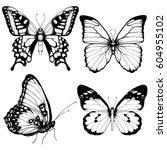 vector butterfly hand drawn set ... | Shutterstock .eps vector #604955102