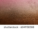 Red Snake Skin Texture...