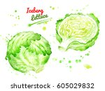 watercolor illustration of... | Shutterstock . vector #605029832