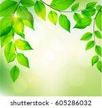 background of fresh green...   Shutterstock .eps vector #605286032