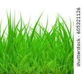 spring grass | Shutterstock .eps vector #605321126