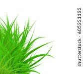 green grass | Shutterstock .eps vector #605321132