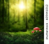 dark magic forest and sunshine | Shutterstock . vector #605441012