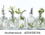 bottle of essential oil with... | Shutterstock . vector #605458196