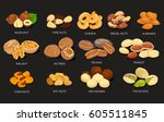 nut food grains or beans of... | Shutterstock .eps vector #605511845