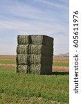 Small photo of Arizona baled alfalfa