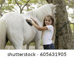Young Girl Grooming Horse