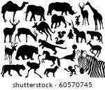 animals | Shutterstock .eps vector #60570745