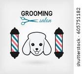 pet grooming salon logo design. ... | Shutterstock .eps vector #605751182