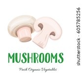 vector mushrooms . vegetable... | Shutterstock .eps vector #605785256