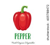 vector pepper. vegetable... | Shutterstock .eps vector #605788472