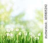 seasonal landscape with... | Shutterstock . vector #605805242