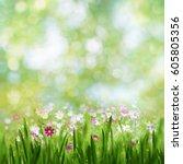 beauty summer day  abstract... | Shutterstock . vector #605805356