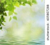 abstract seasonal backgrounds... | Shutterstock . vector #605807288