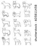 medium dog breeds line art set | Shutterstock .eps vector #605811458