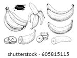 banana set vector drawing.... | Shutterstock .eps vector #605815115