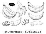 banana set vector drawing.... | Shutterstock .eps vector #605815115