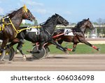 horses trotter breed in motion... | Shutterstock . vector #606036098