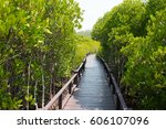 nature learning path  made from ... | Shutterstock . vector #606107096