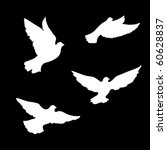 four pigeons silhouettes | Shutterstock .eps vector #60628837