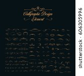 calligraphic design elements  | Shutterstock .eps vector #606305996