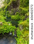 green fern and little waterfall ... | Shutterstock . vector #606402572