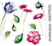 set of decorative wild flowers... | Shutterstock . vector #606579242